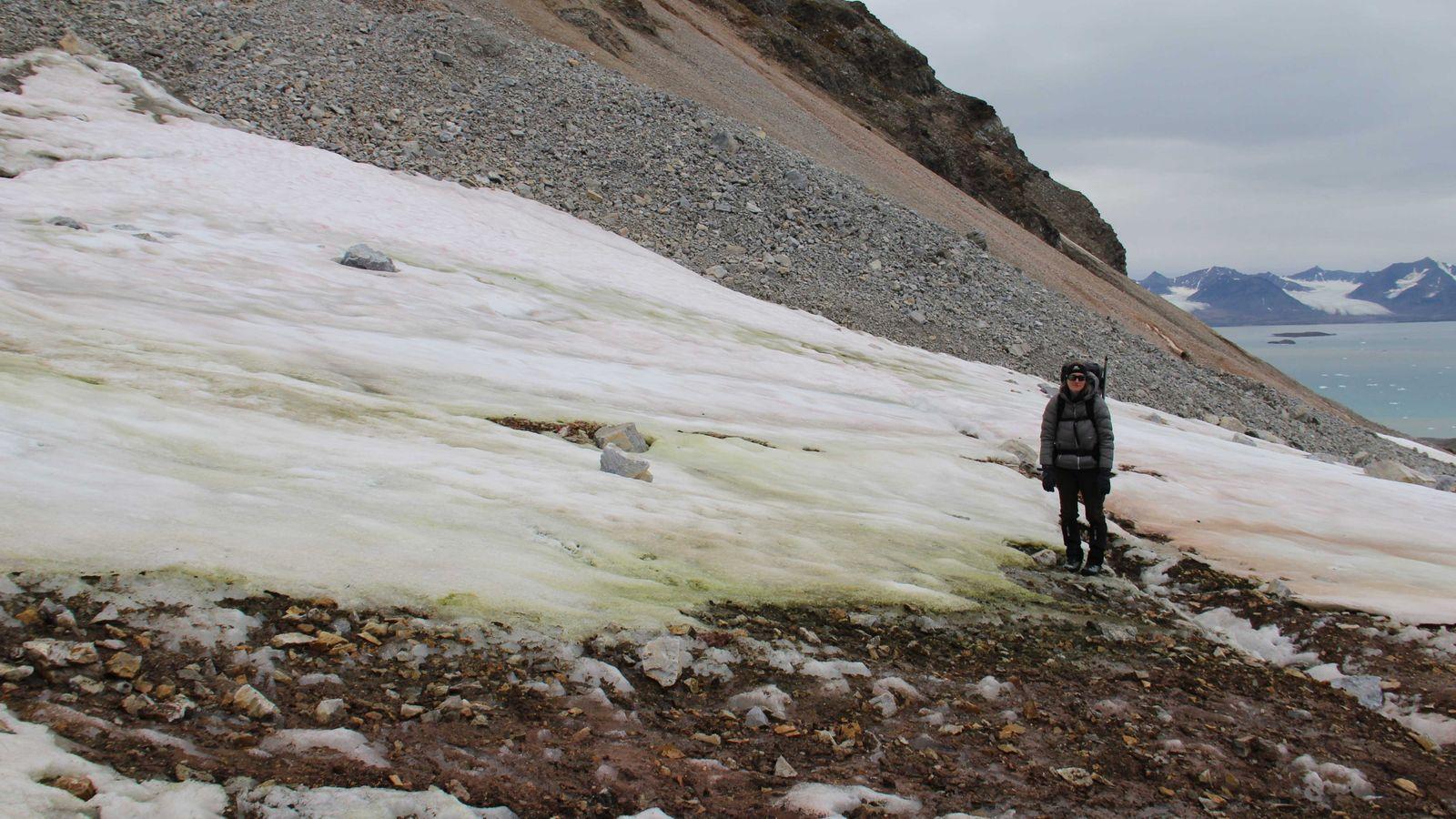 Stefanie Lutz auf Spitzbergen