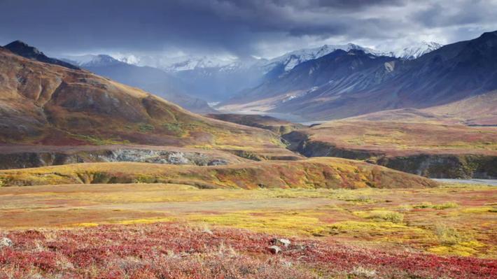 Denali-Nationalpark, Alaska
