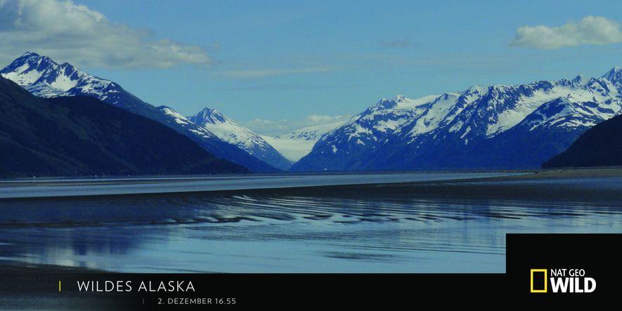 "2. Dezember ""Wildes Alaska"""