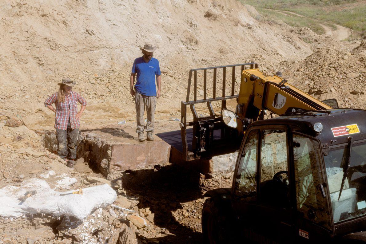 Ausgrabung mit Gabelstapler