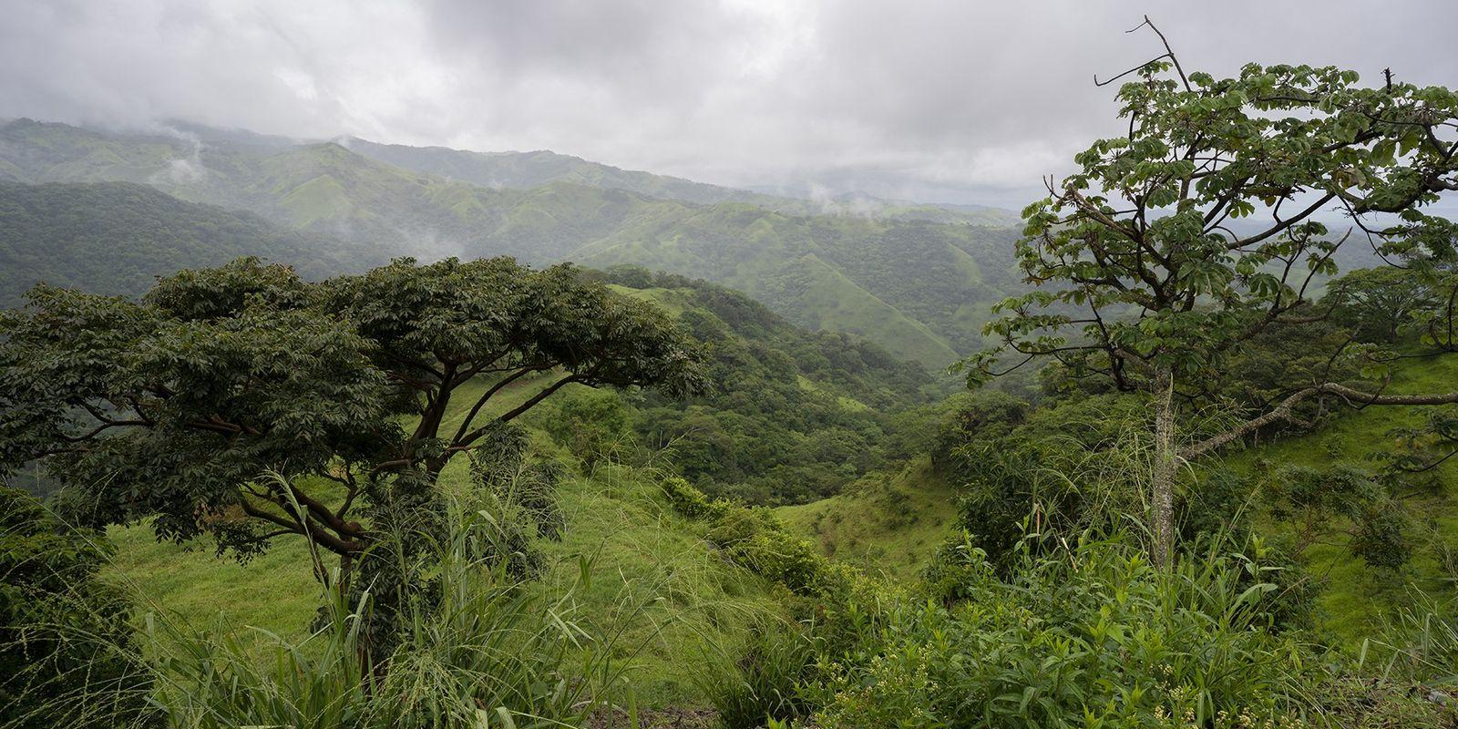 Costa Rica: Als Land klein, doch in Sachen Nachhaltigkeit ganz groß