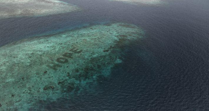Der Schriftzug HOPE aus mit Riffsternen wiederhergestellten Korallen am SHEBA® Hope Reef in Indonesien.
