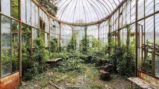Galerie: Was die Natur zurückerobert