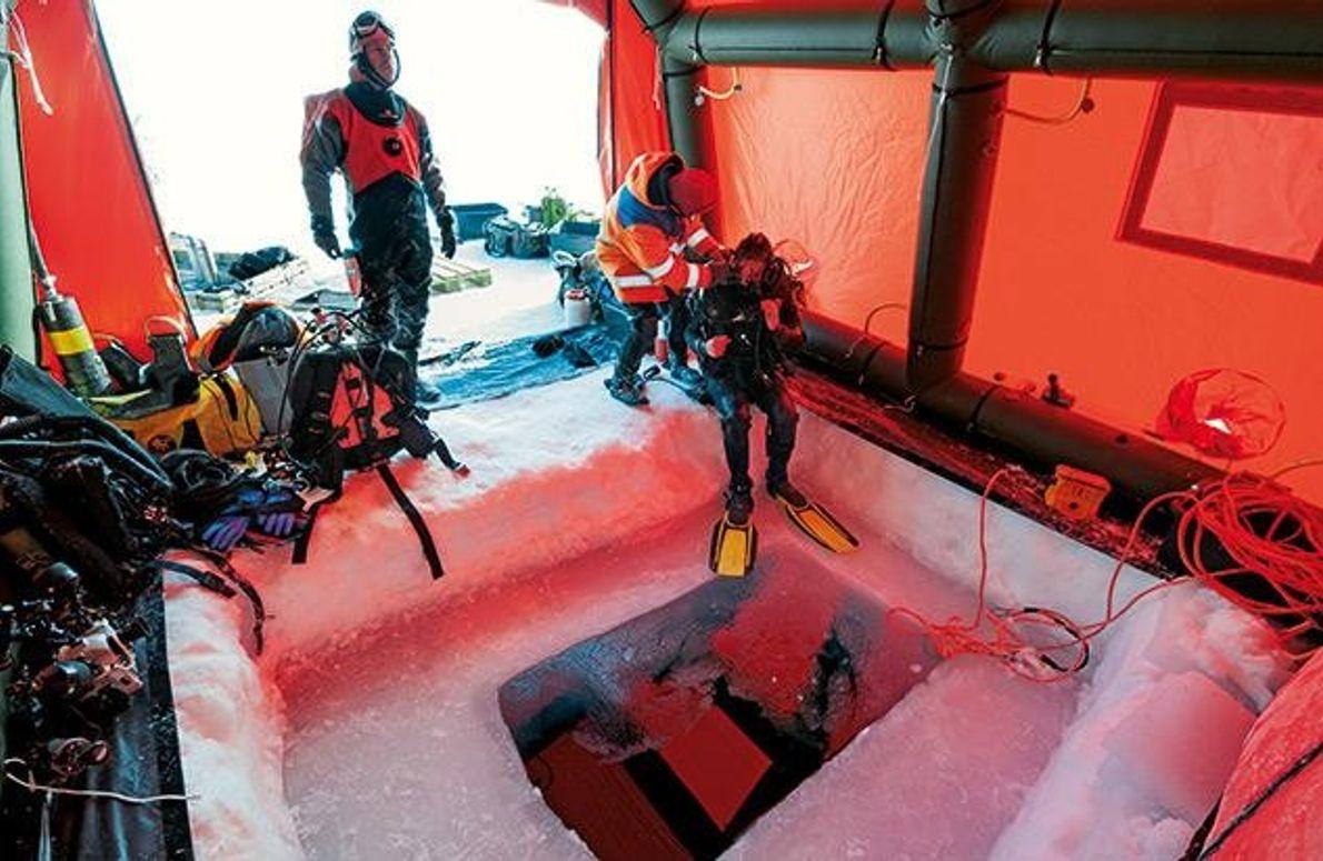 Abtauchen ins Polarmeer