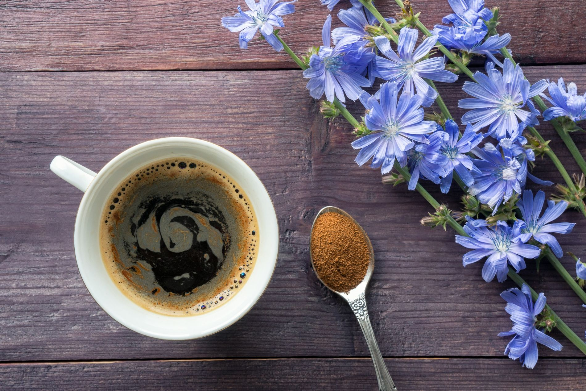 Zichorie Blüten Kaffee