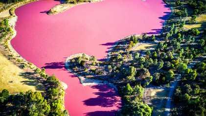 Pinke Seen: So entsteht die einzigartige Färbung