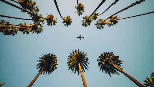 Die Zukunft des Reisens