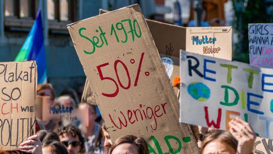 Bundestagswahl: Wer tut was für die Umwelt?