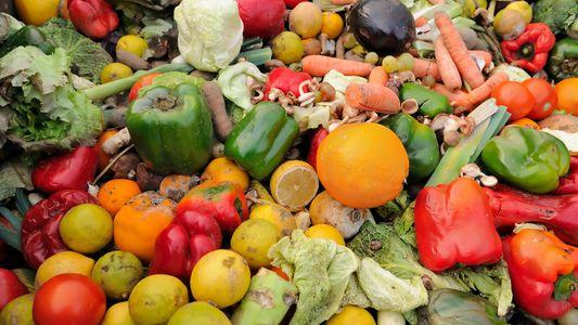 Teller statt Tonne: Wie wir weniger Lebensmittel verschwenden