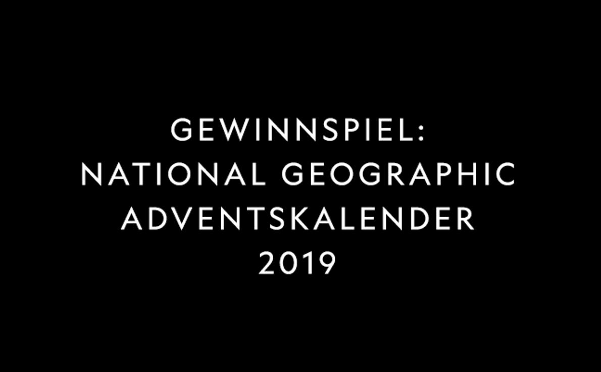"""Teilnahmebedingungen & Datenschutz """"Gewinnspiel: National Geographic Adventskalender 2019"""""""