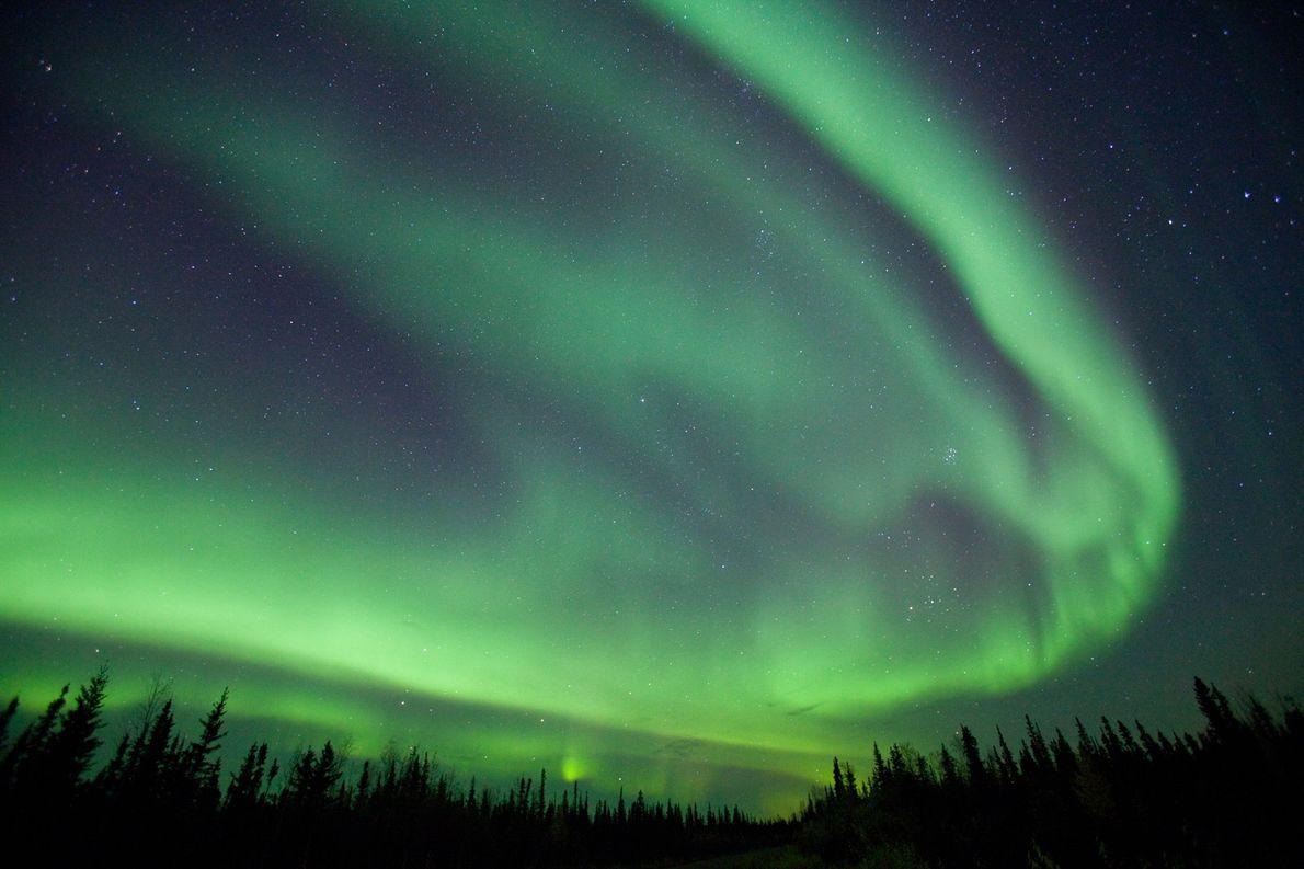 Polarlicht bei Fairbanks in Alaska