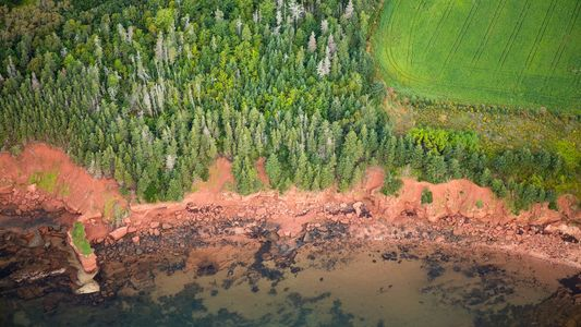 Galerie: Leben mit dem Meer: Abenteuer in Kanadas Seeprovinzen 2