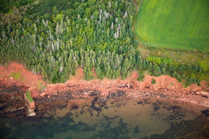 Leuchtend grüner Wald und Wiesen stehen in starkem Kontrast zu den rotbraunen Ufern von Prince Edward ...