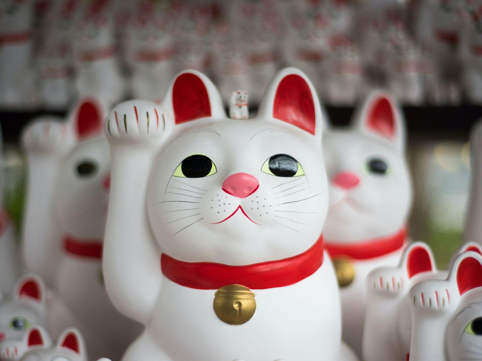 Maneki-neko: Japanische Winkekatze