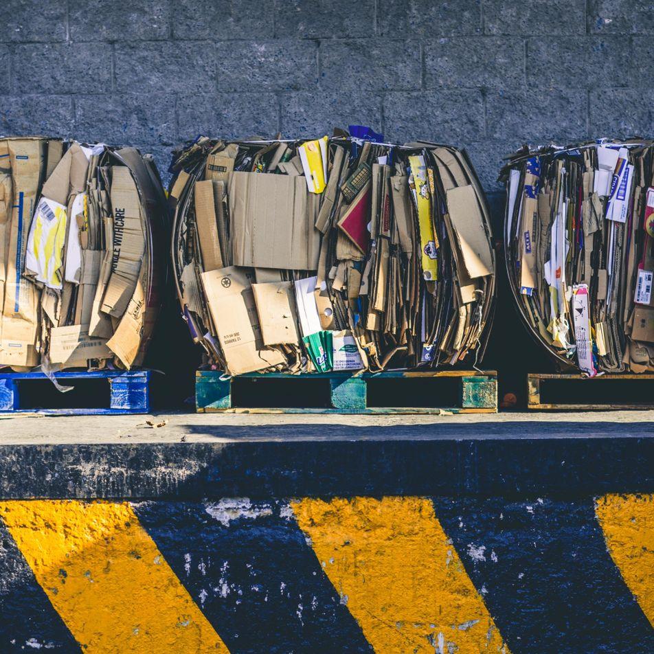 Weniger wegwerfen: 10 schnelle Tipps für bewussten Konsum