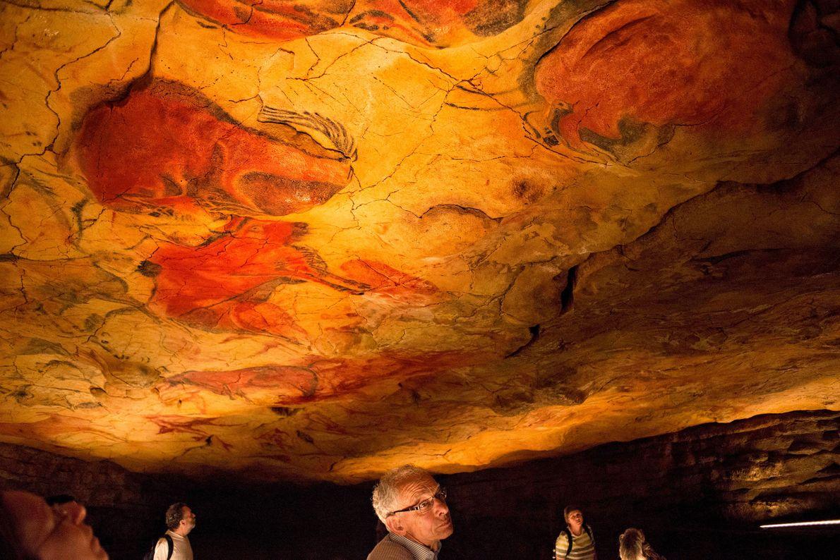 Die kräftige rote Farbe auf diesen Wänden der Höhle von Altamira wurde in den meisten Fällen …