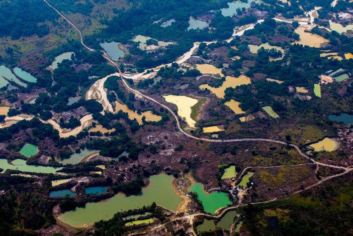 Luftaufnahmen von Esperanca IV, einer unauthorisierten Goldgrube in der Nähe des indigenen Menkragnoti-Territoriums in Altamira, Bundesstaar ...
