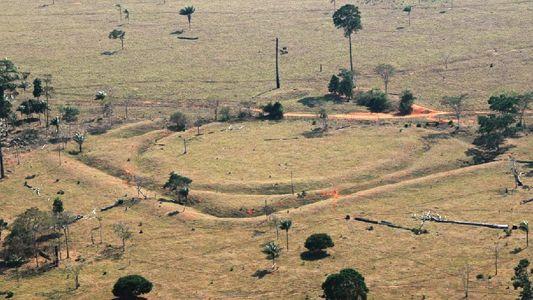 Präkolumbianische Zivilisation im Amazonas war deutlich größer als gedacht