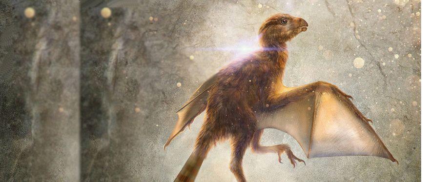 """Fossilfund: """"Dinosaurier-Hörnchen"""" mit Fledermausflügeln"""