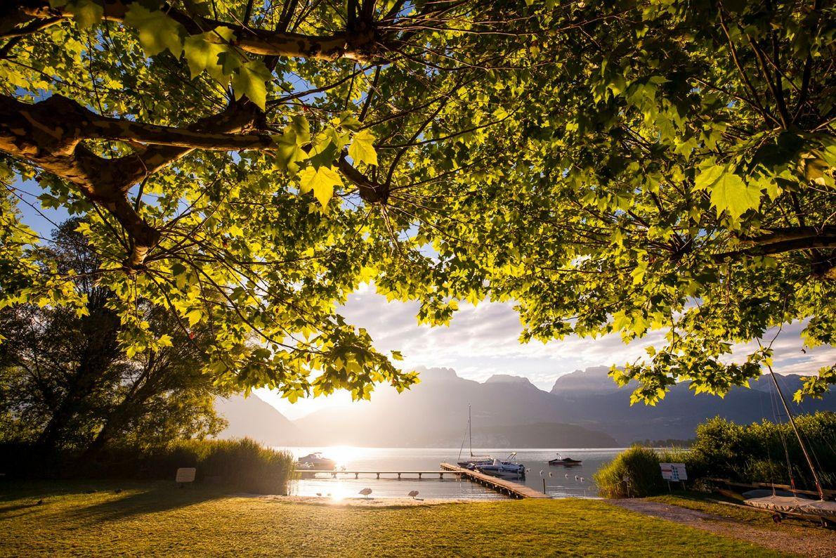 Der Lac d'Annecy ist bei Seglern, Radfahrern, Paraglidern und sogar Tauchern ein beliebtes Ausflugsziel. Der See ...