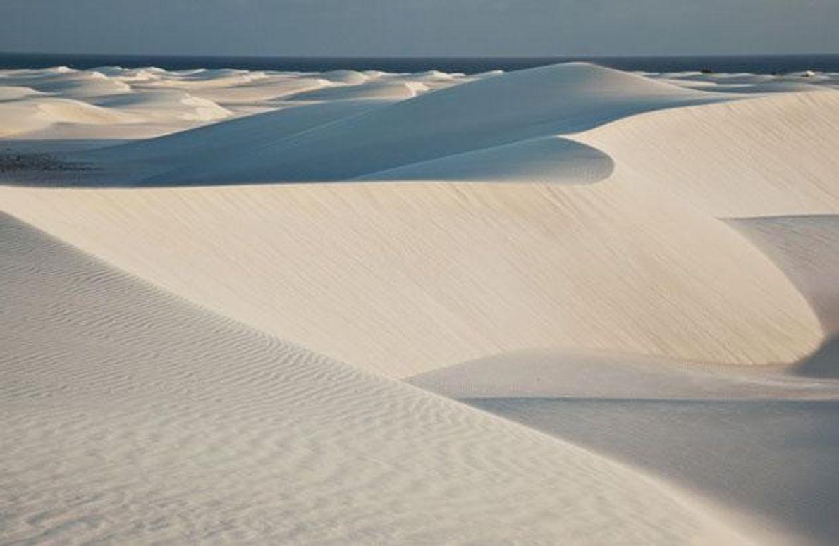 Majestätische, weiße Sanddünen erstrecken sich kilometerweit entlang der Südküste Sokotras – hier am Aomak-Strand. Die heftigen …