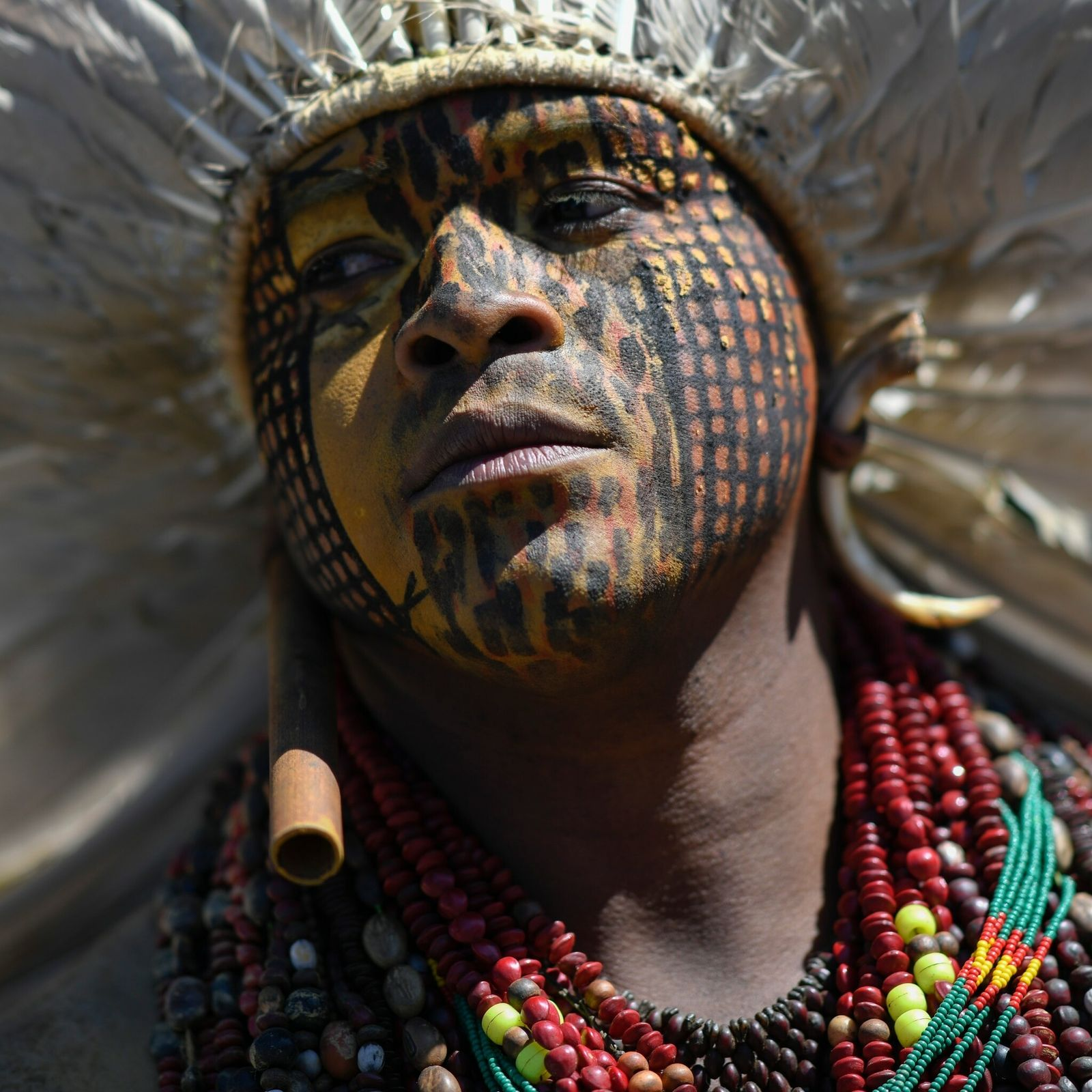 Ein indigener Demonstrant im Juni 2021 vor dem Kongressgebäude in der brasilianischen Hauptstadt Brasilia.