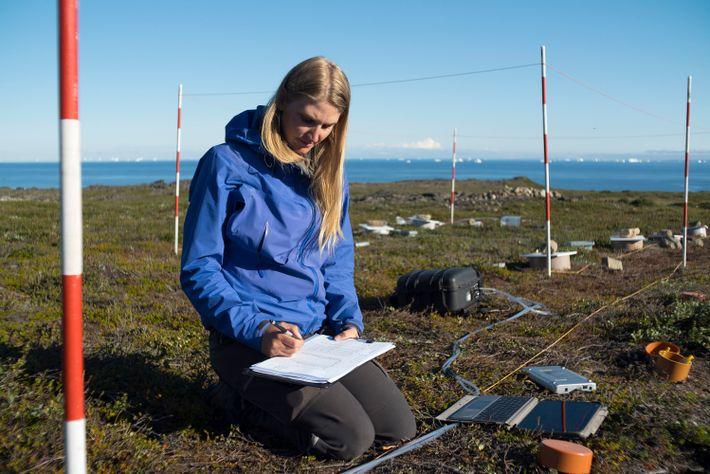 Birgitte Danielsen protokolliert den Kohlendioxid- und Methangehalt des Bodens an ihrer Forschungsstätte in der Tundra, etwa ...