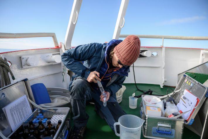 Martin Nielsen überträgt Proben mit Phytoplankton und Zooplankton von seiner Forschungsstätte, einem offenen Meeresabschnitt vor der ...