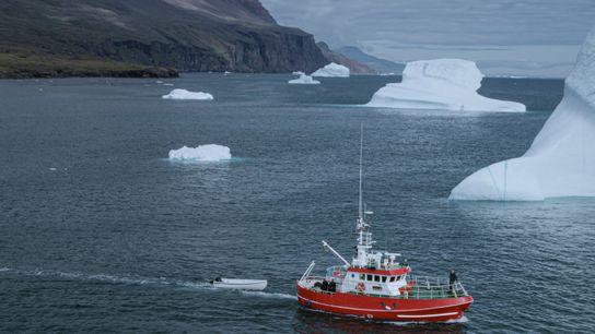 Martin Nielsen steht am Bug des Forschungsschiffs Porsild, während es an den Eisbergen vor der Küste ...