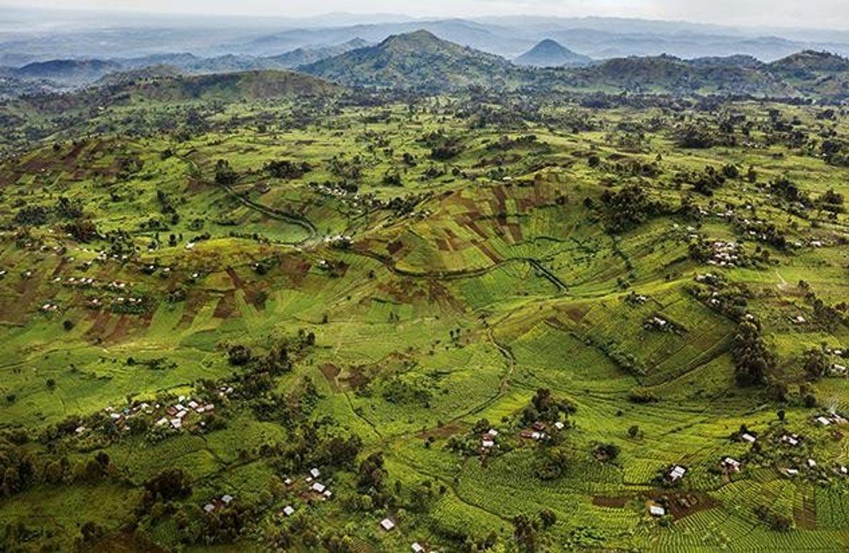 Das Gebiet des Virunga-Parks gehört zu den fruchtbarsten Landstrichen des afrikanischen Kontinents. Weil die vier Millionen …