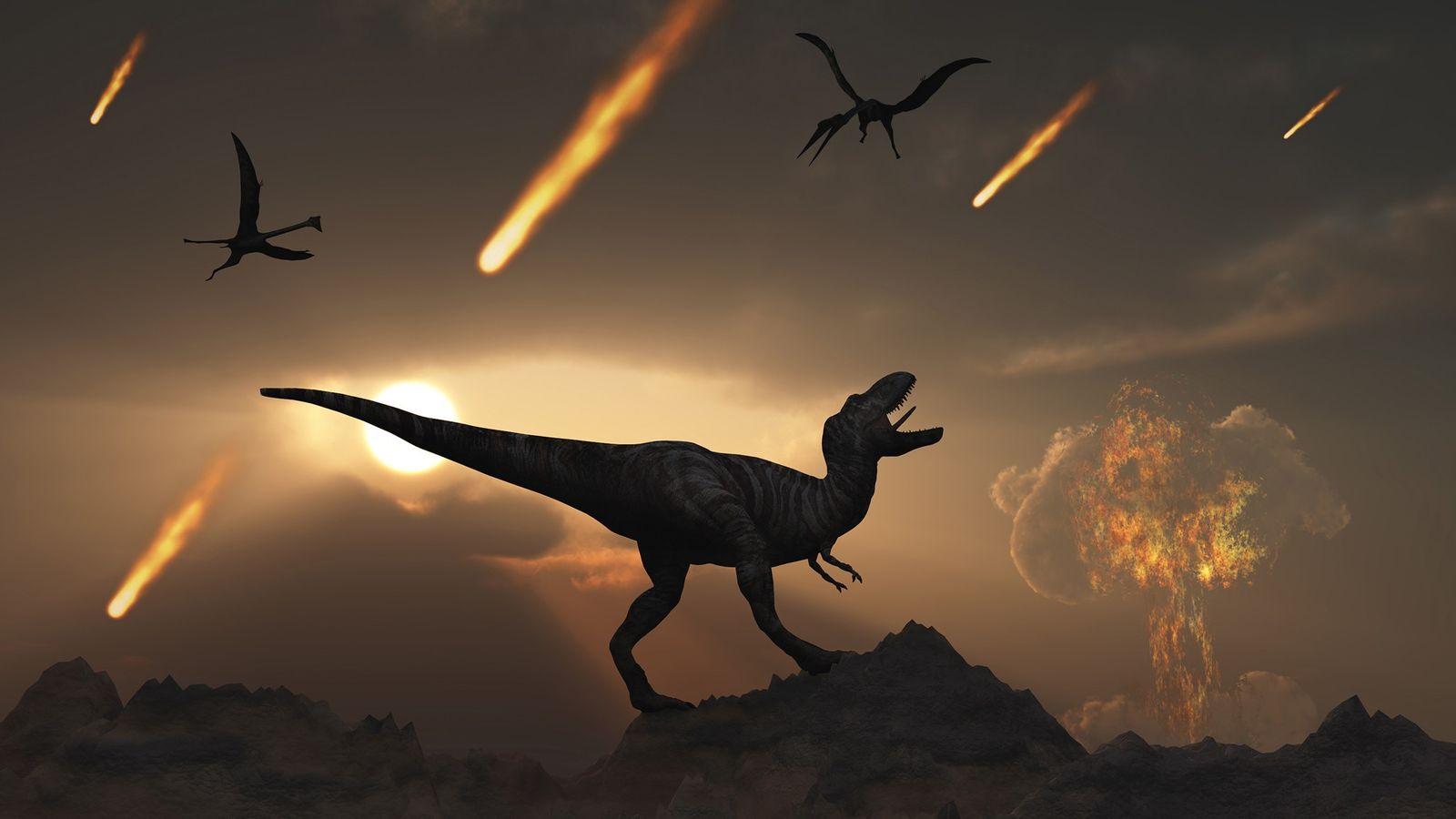 Am Ende der Kreidezeit vor 66 Millionen Jahren kam es zu einem gigantischen Asteroideneinschlag bei Chicxulub ...