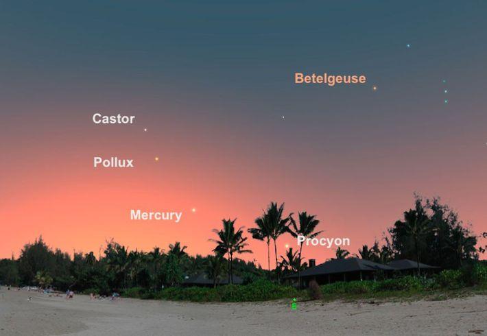 Am 9. August ist der Merkur so gut zu sehen wie das ganze Jahr nicht.