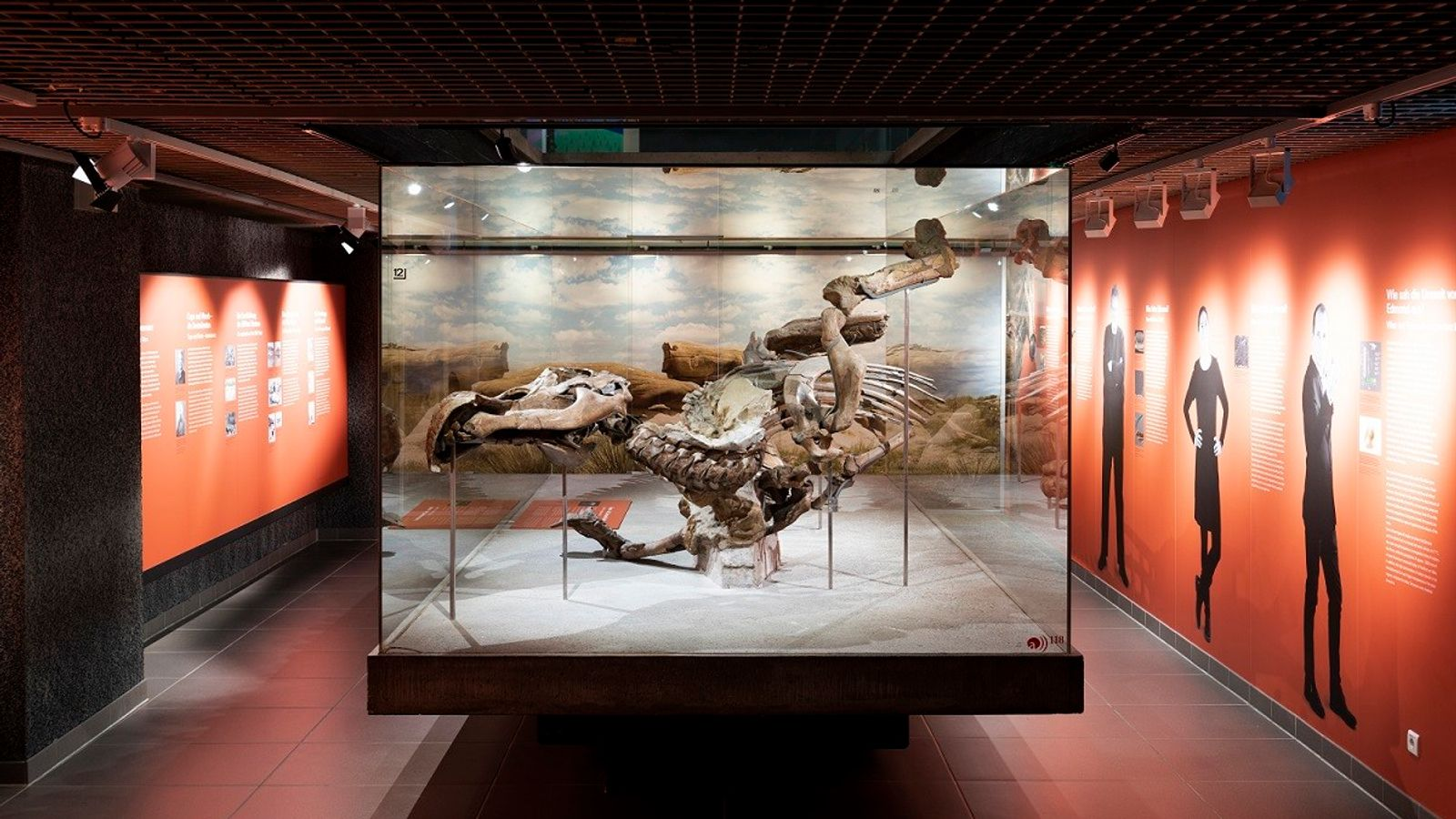 Edmontosaurus-Mumie