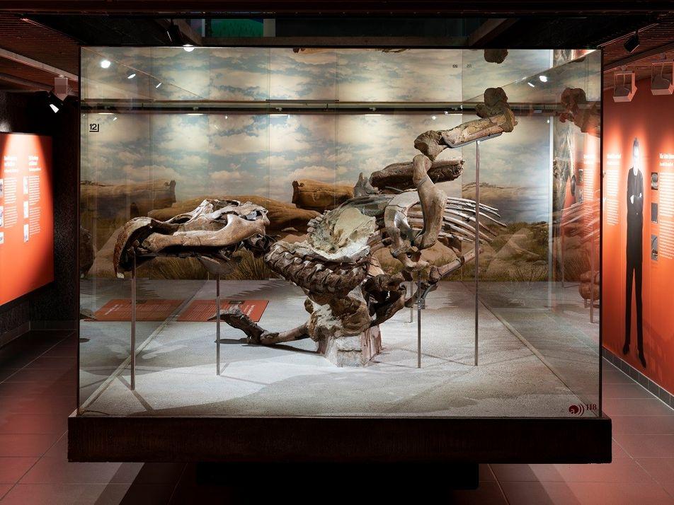 Dinosaurier aus dem digitalen Labor: Wie die Urzeit zu neuem Leben erwacht