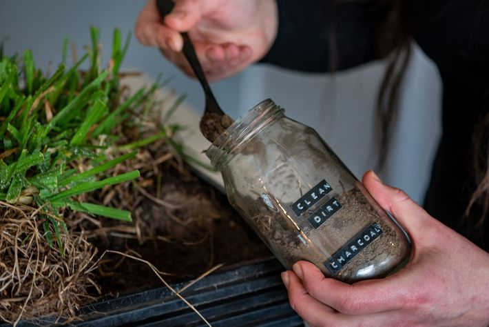 Small arranges grass and soil she collected from the orphanage to give to three rescued wombats ...