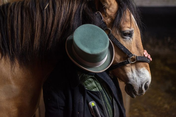 Eines von etwa 200 Kutschpferden in New York City wartet in Manhattans Clinton Park Stables mit ...