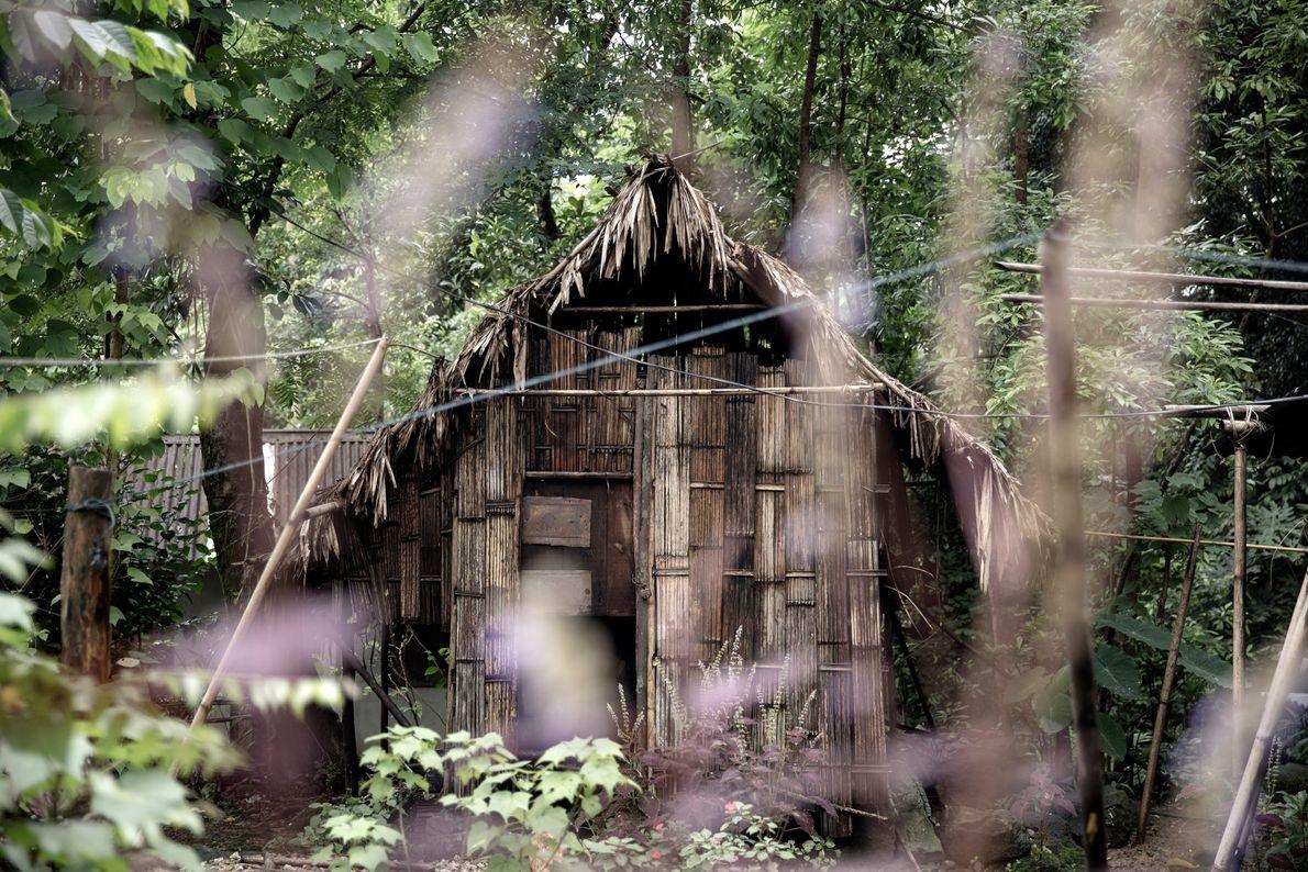 Haus aus natürlichen Baumaterialien