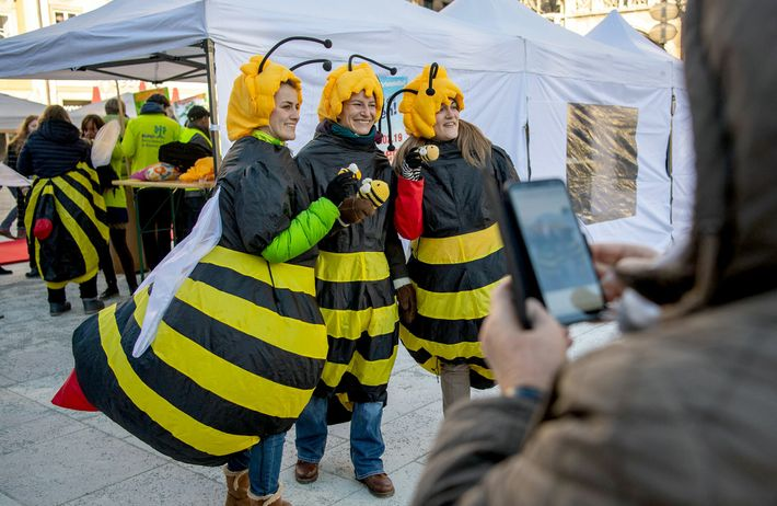 """Als Bienen verkleidete Aktivistinnen in München während der Kundgebung zum Start der """"Rettet die Bienen""""-Petition im ..."""