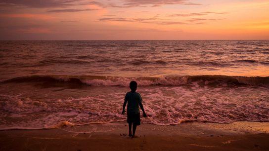 Die Sonne geht über Melville Island unter und taucht das Meerwasser in sanfte Rot- und Orangetöne.