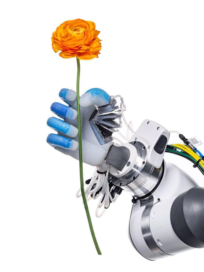 Mit einem festen und doch zarten Griff greift eine Roboterhand des Robotics and Biology Laboratory der ...