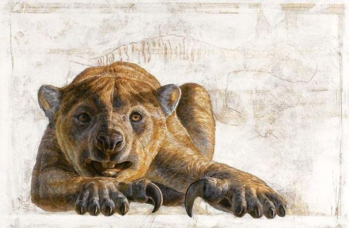 Beutellöwe - Thylacoleo carnifex