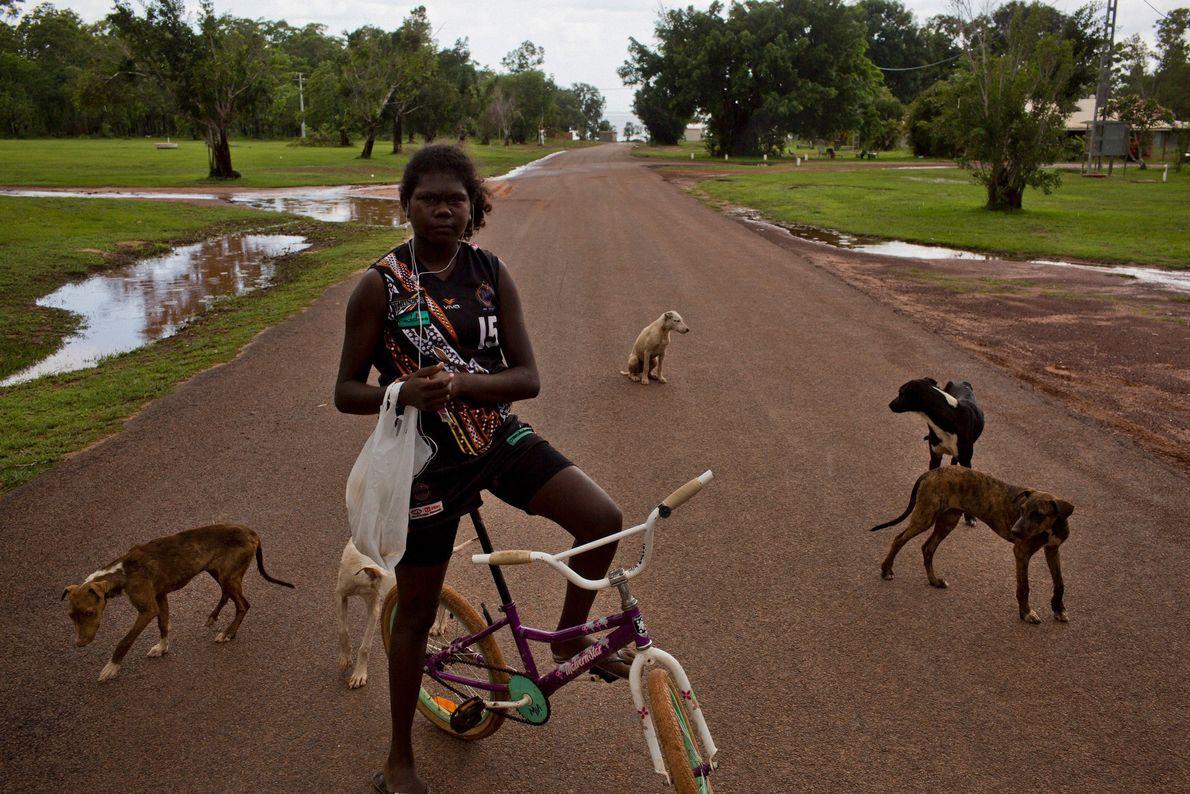 Auf einer der Hauptstraßen von Pirlangimpi – einer Stadt auf Melville Island – versammeln sich Hunde ...