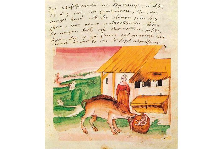 Historische Zeichnung: Ein Schwein tötet ein Kind vor den Augen seiner Mutter