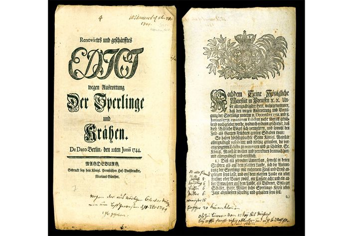Historische Buchseite: Verordnung zur Sperlingsbekämpfung König Friedrichs II.