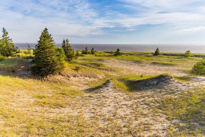In dem artenreichen Pointe-aux-Outardes Nature Park gibt es ganze neun verschiedene Ökosysteme, darunter ausgedehnte Sandstrände und ...