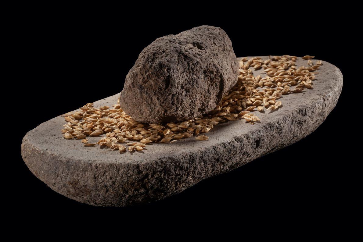 A grindstone from Aktopraklik testifies to grain farming.