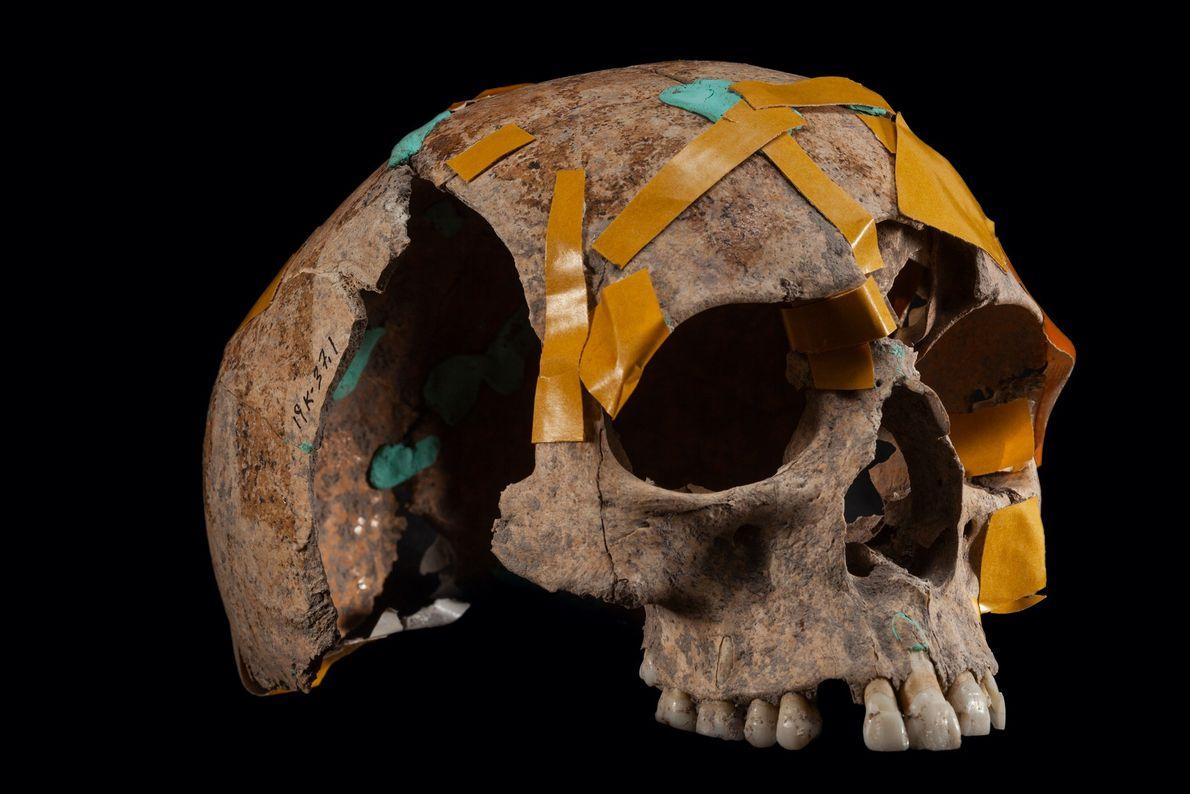 Bones and artifacts some 7,700 years old found at Aktopraklik, a Neolithic village in northwestern Turkey, ...