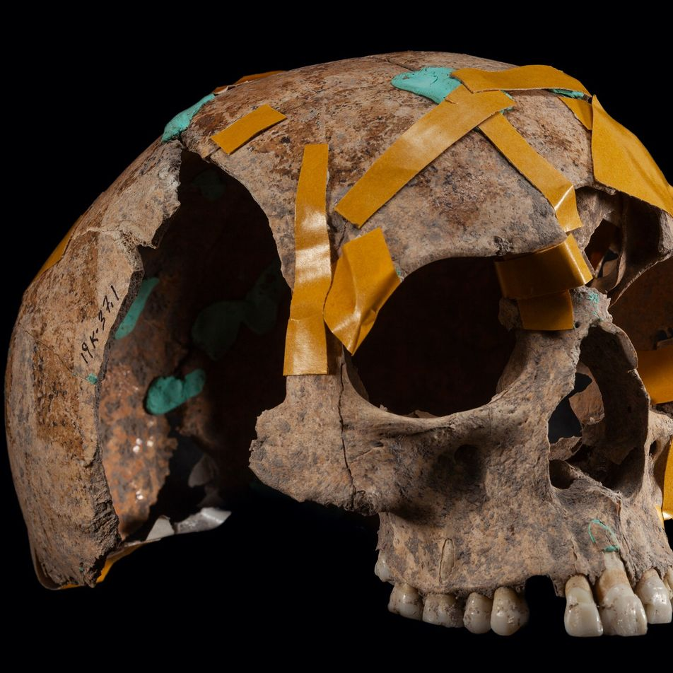 Galerie 2: Wer waren die ersten Europäer?