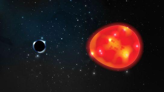 Ein kleines Schwarzes Loch umkreist einen roten Riesenstern etwa 1.500 Lichtjahre von der Erde entfernt.