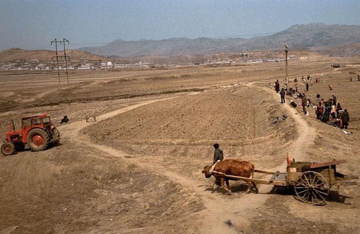Auf diesen Feldern in der Nähe der chinesischen Grenze wird mehr mit Muskelkraft als mit Maschinen …